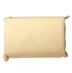 Cleaner Sponge COMBI